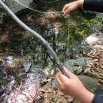 【ザリガニ釣り】春から夏にかけて遊ぶのに最適?必要なグッズは?