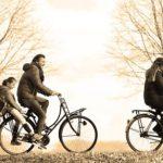 【子乗せ自転車】電動アシストありVSなしどちらがいいの?